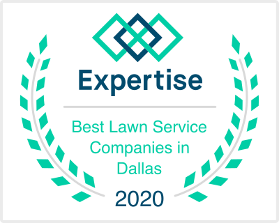expertise lawn care dallas