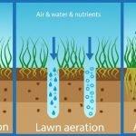 Does Liquid Lawn Aeration Work?