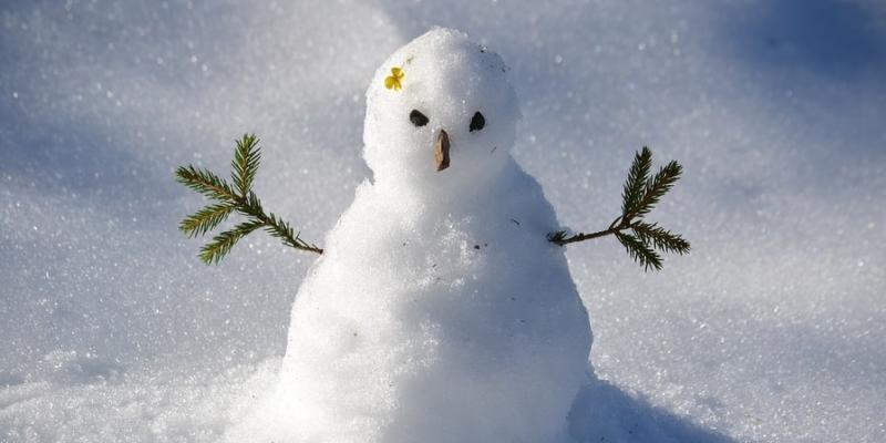 winter-lawn-care-tips