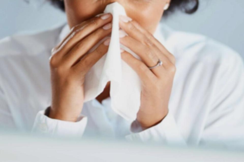pest allergies