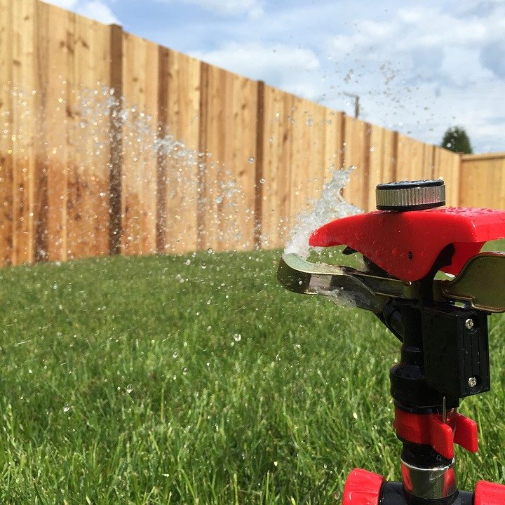 save water maintaining lawn